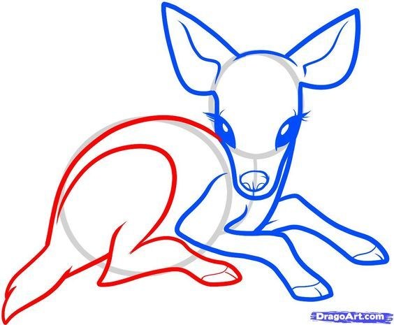 564x465 The Best How To Draw Deer Ideas Drawing People