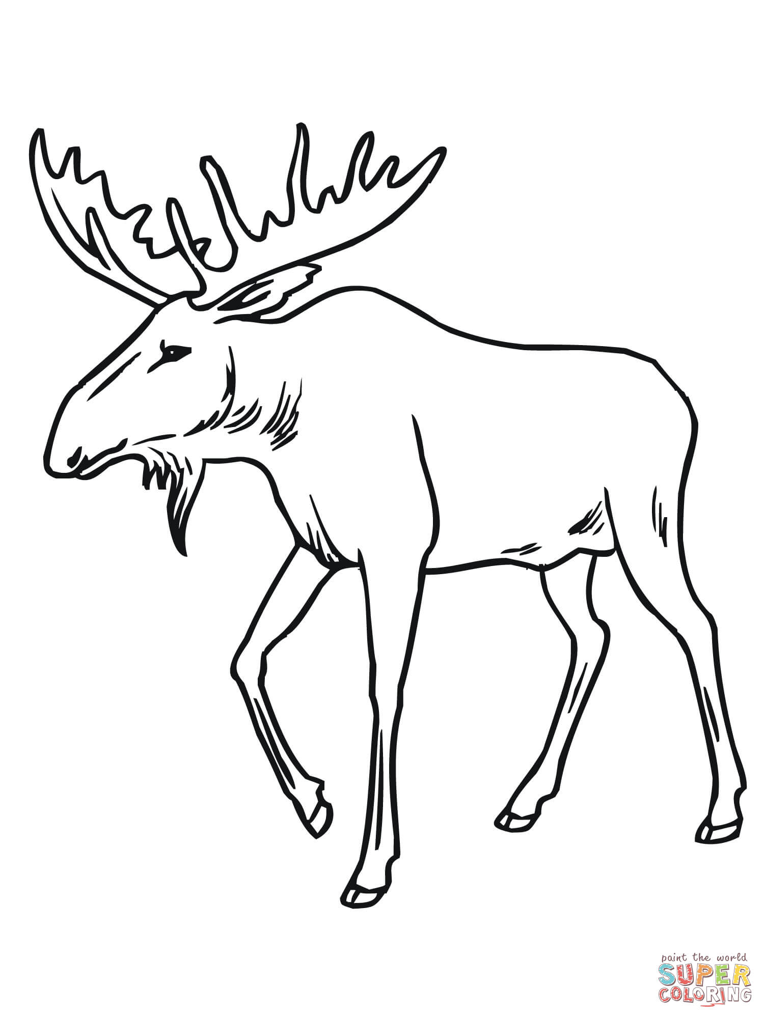 1500x2000 Drawing Of A Moose