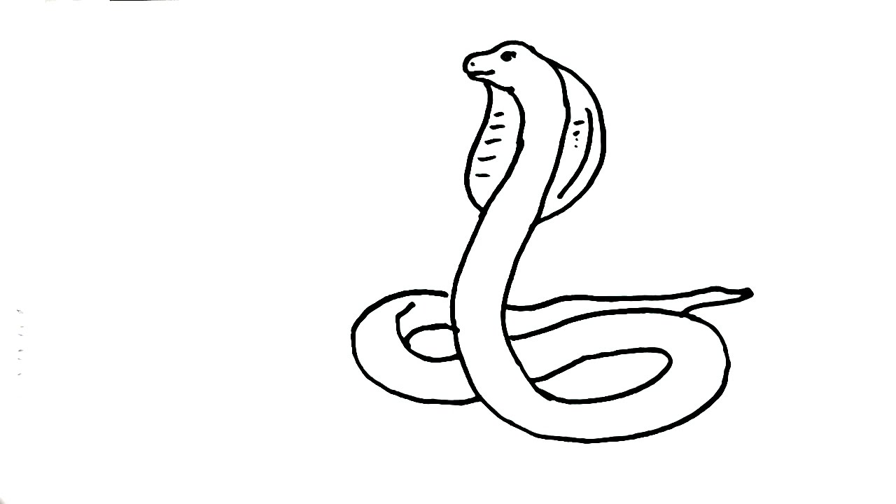 1280x720 How To Draw Snake King Cobra In Easy Steps For Children
