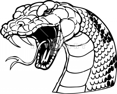 400x320 Snake Design