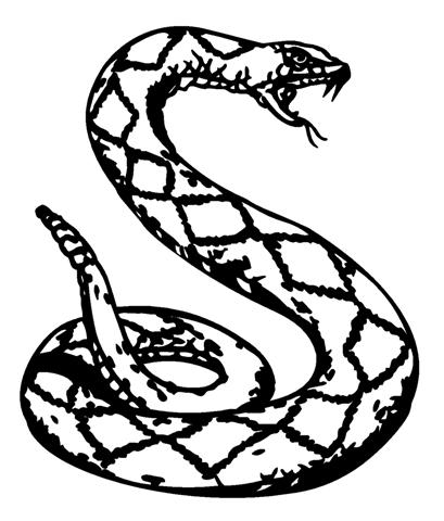 409x480 Drawn Snake Rattlesnake