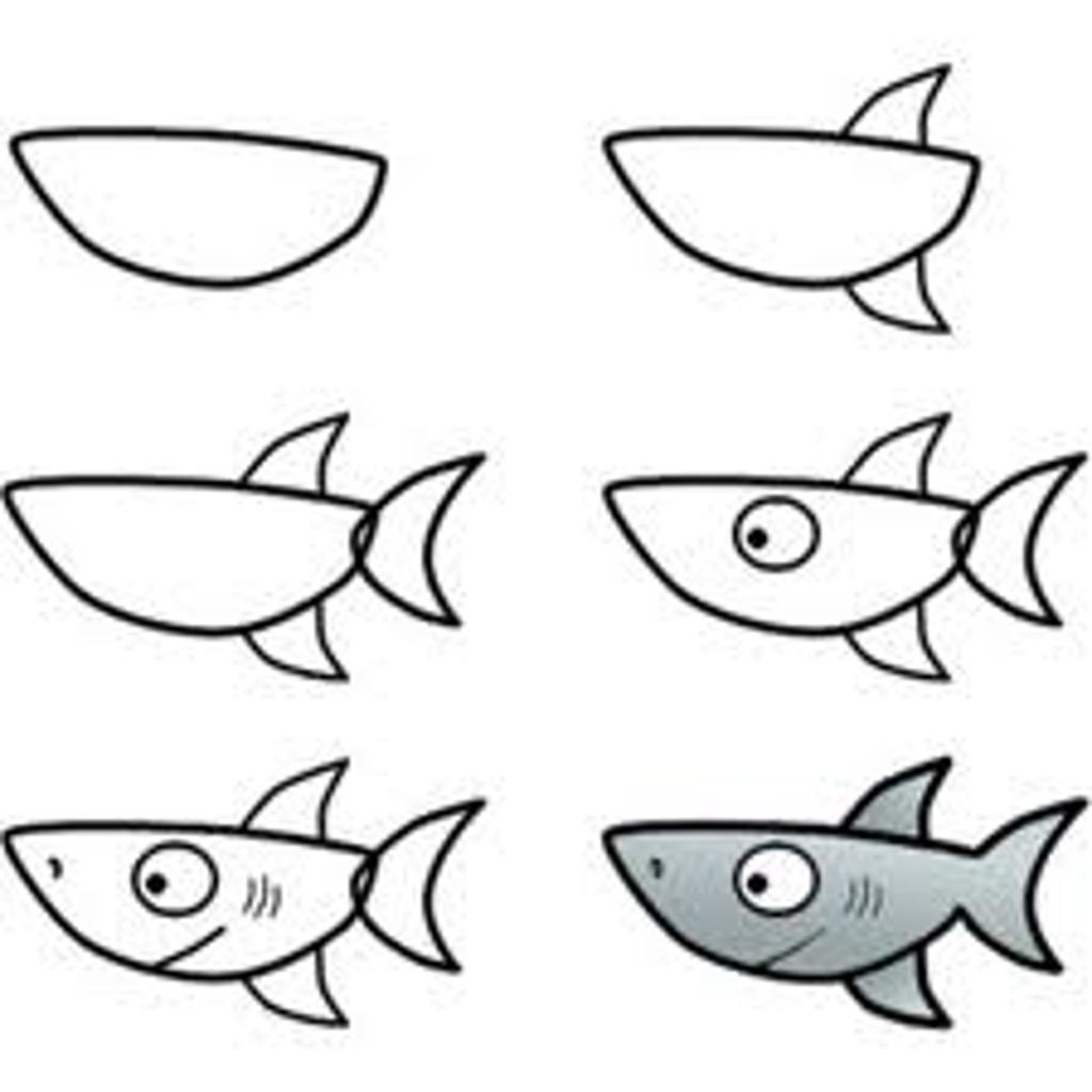 How To Draw A Shark Free Download Best How To Draw A Shark On
