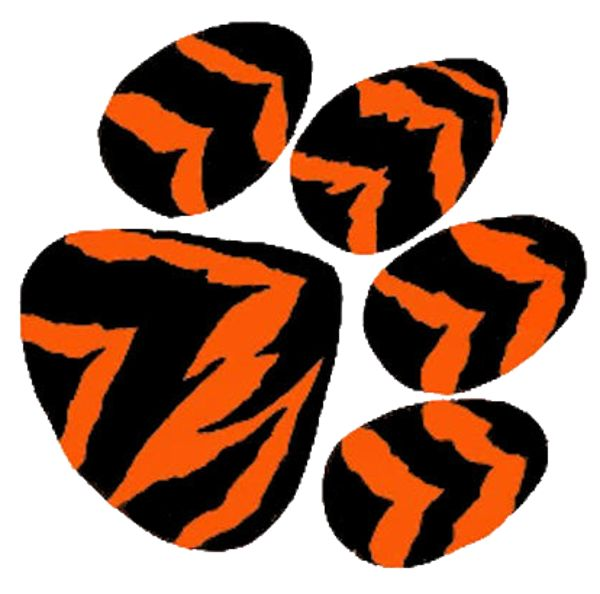 600x594 Best Tiger Paw Ideas Tiger Tiger, A Tiger