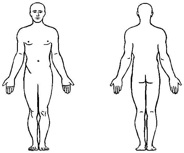 618x515 Clipart Human Body Outline