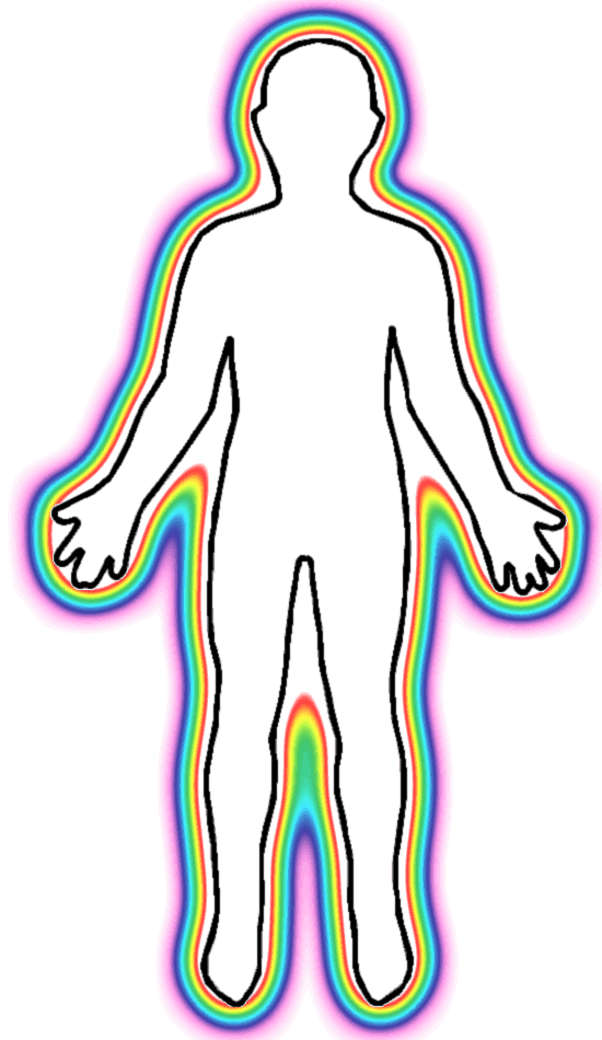 550x950 Body Outline Clipart