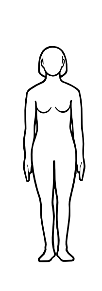 210x599 Body outline clipart