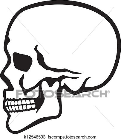405x470 Clipart Of Human Skull Profile K12546593
