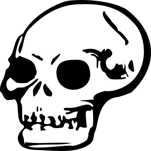 600x600 Human Skull Clip Art Free Vector In Open Office Drawing Svg ( Svg