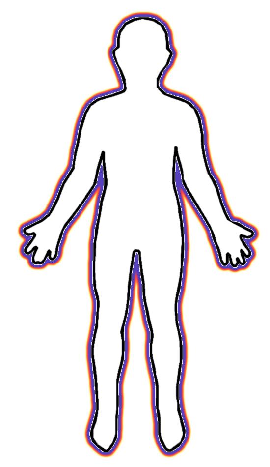 550x950 Bones Clipart Human Body