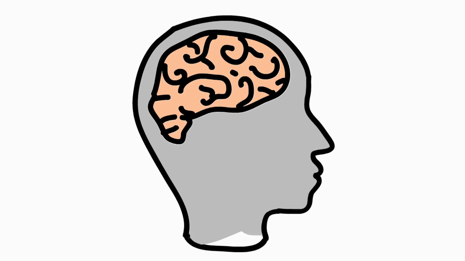 1920x1080 Brains Clipart Transparent Background
