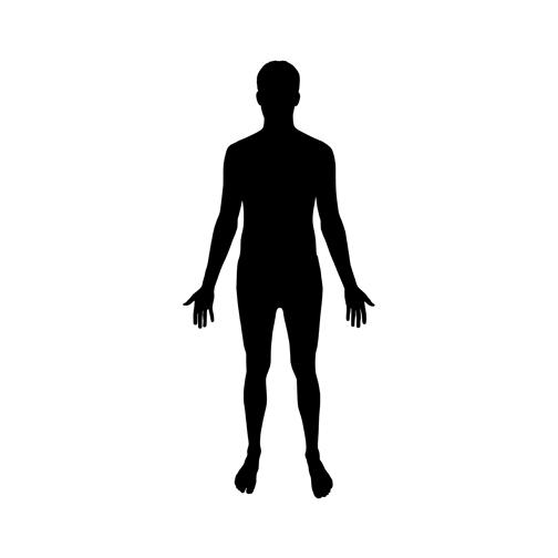 504x504 Human Clipart Human Figure