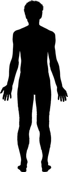 236x595 Human Clipart Human Standing