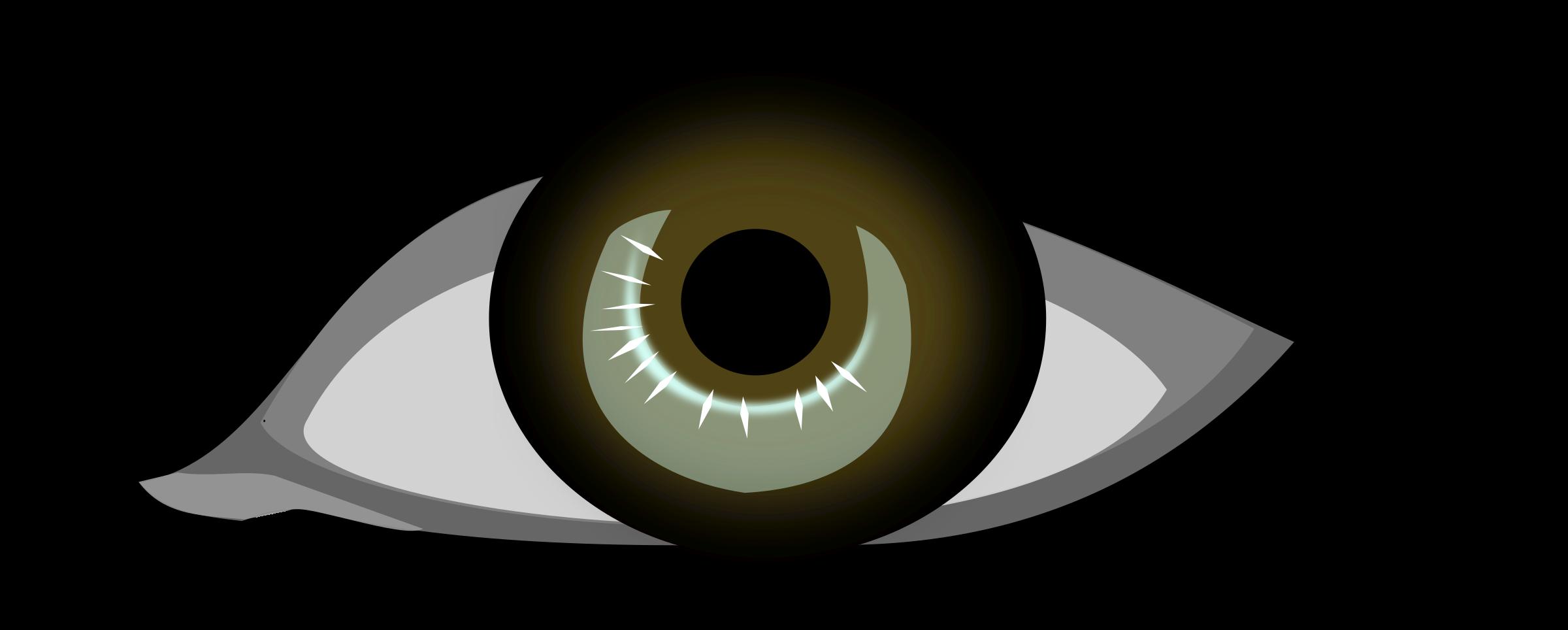 Human Eye Clipart