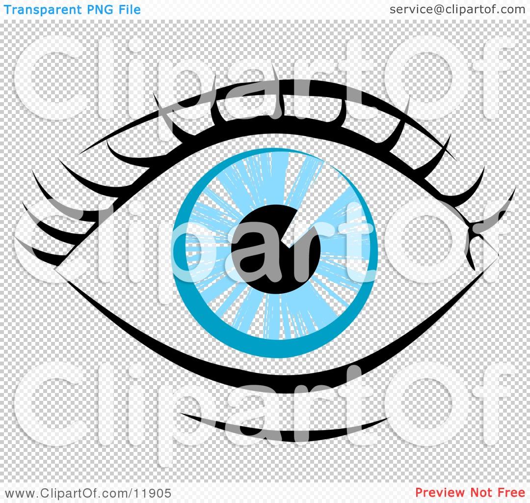 1080x1024 Eyelash Clipart Human Eye Clip Art Blue Human Eye And Eyelashes