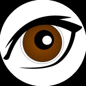 300x300 Brown Eye Clip Art