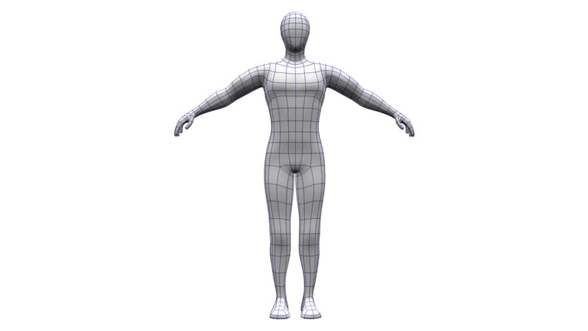 852x480 Human Body Outline Stock Footage Video Shutterstock