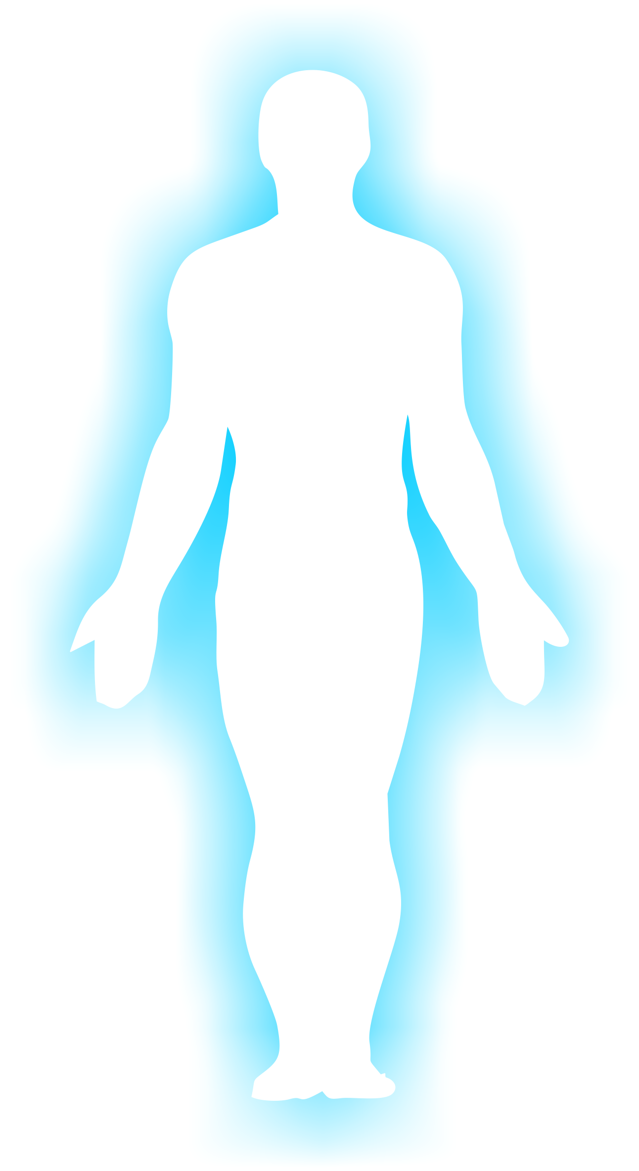 1292x2368 Png Human Body Outline Transparent Human Body Outline.png Images
