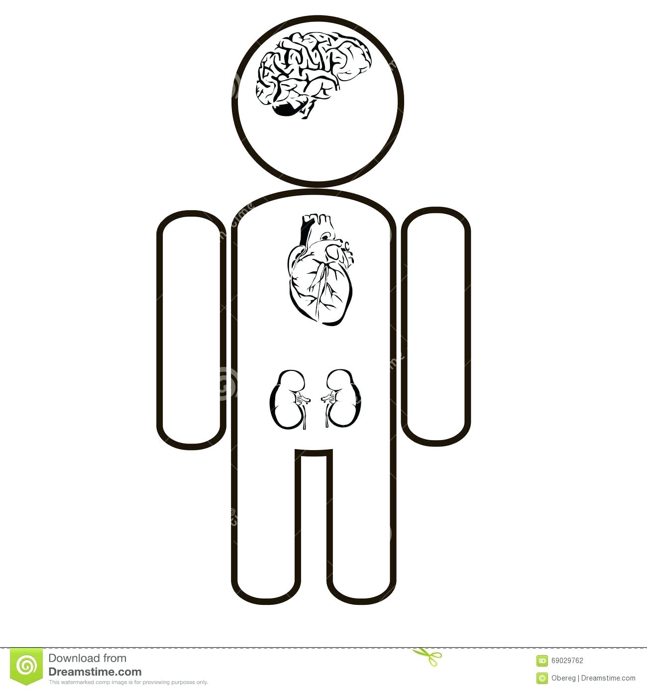 1300x1390 Coloring Pages Glamorous Human Outline. Human Hand Outline Image