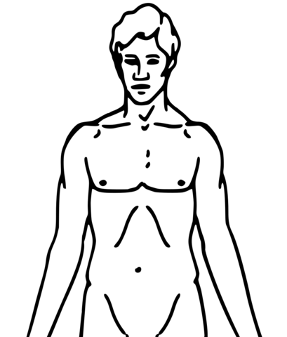 blank human body diagram - Romeo.landinez.co