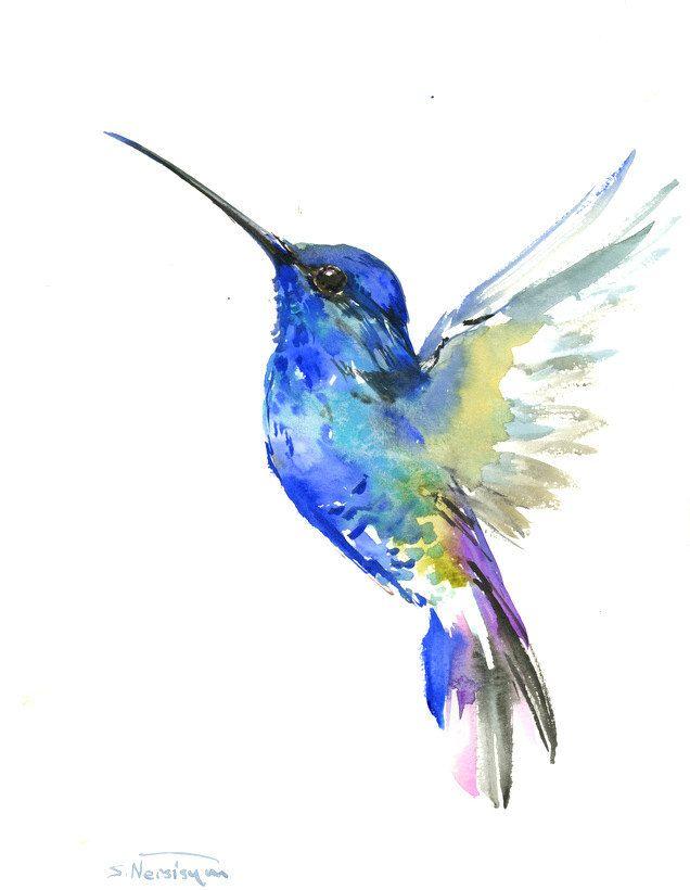 636x820 Drawn Hummingbird Amazing Bird