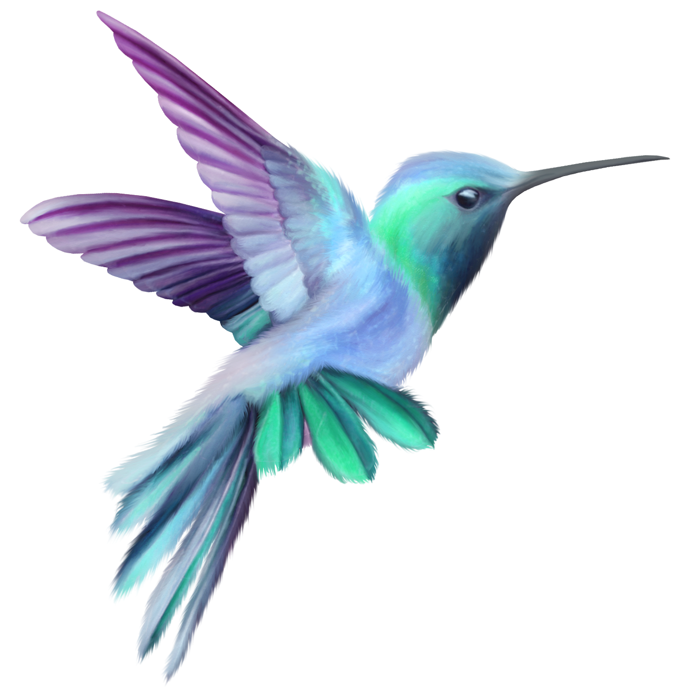 1363x1373 Hummingbird Transparent Clip Art Imageu200b Gallery Yopriceville