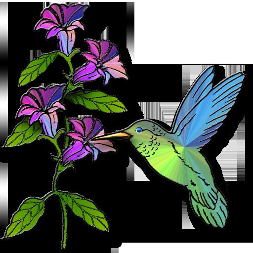 512x512 Hummingbird Clipart 4