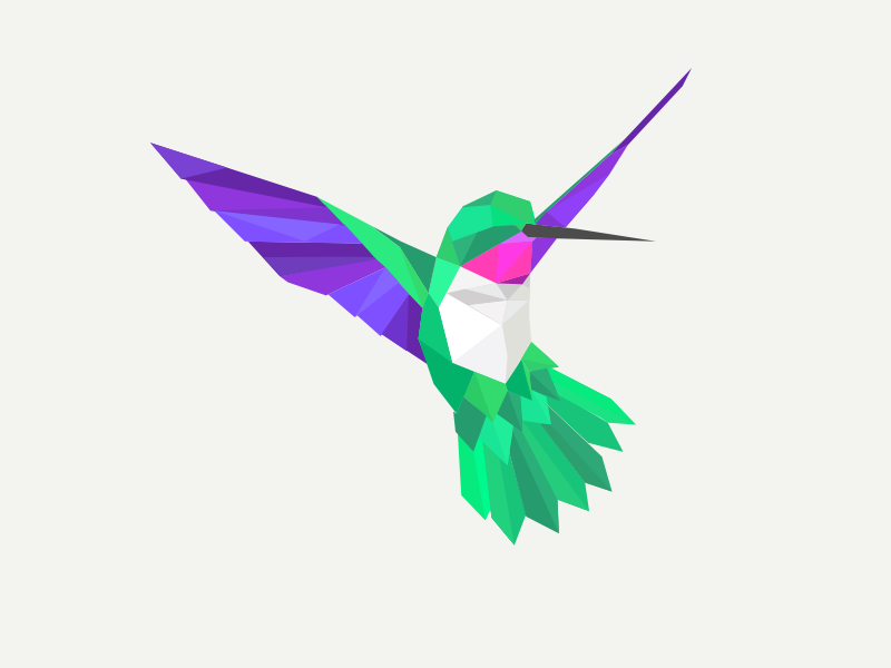 800x600 Hummingbird Update By Jared Trotter