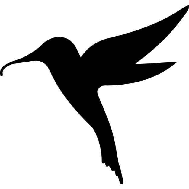 626x626 Hummingbird Bird Shape Icons Free Download