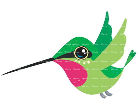 570x453 Cute Clipart Hummingbird