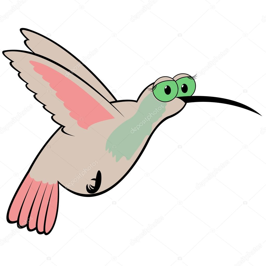 1024x1024 Hummingbird Cartoon Vector Illustration Stock Vector Natreal
