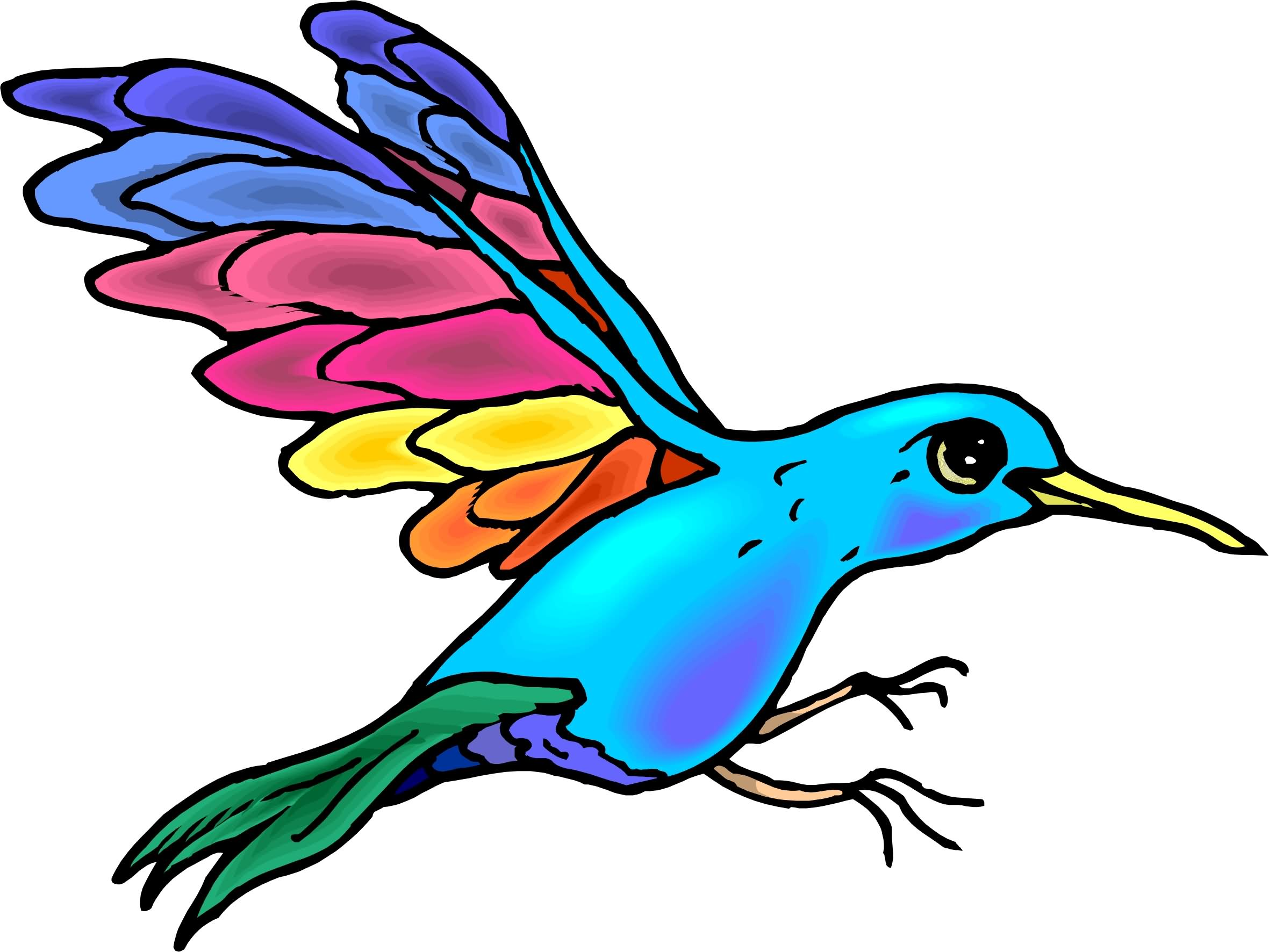 2361x1772 Hummingbird Clipart Beautiful Bird