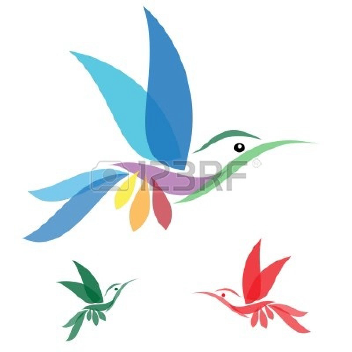 1200x1200 Muscle Cartoon Hummingbird Clipart