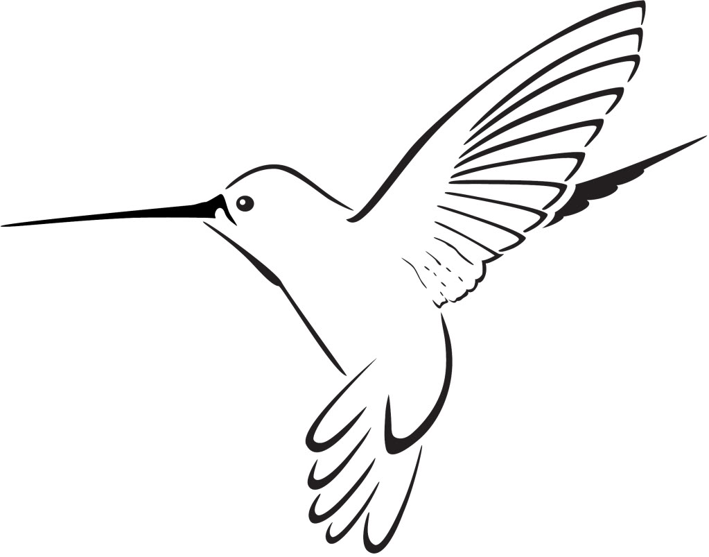 1023x803 Cartoon Hummingbird Clipart
