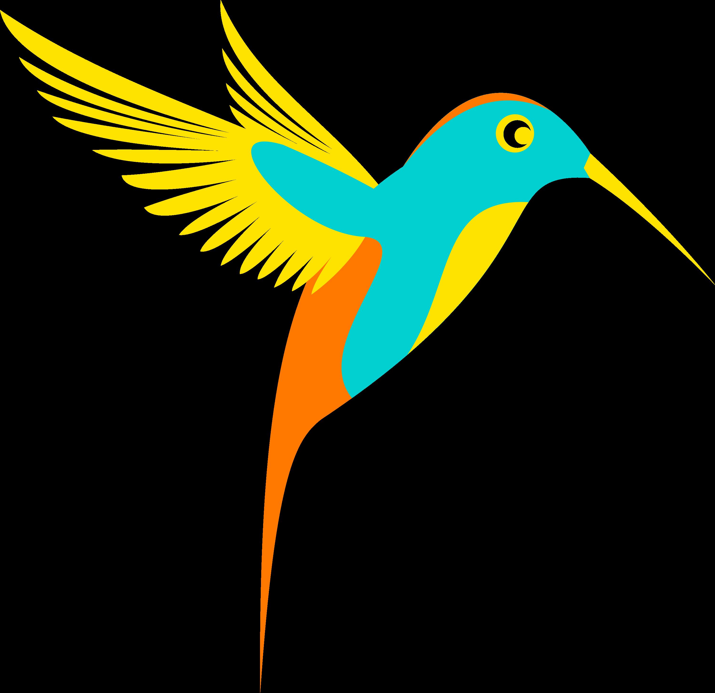 3000x2908 Clorful Hummingbird Clipart, Explore Pictures