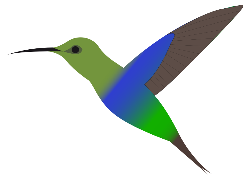 800x577 Hummingbird Clipart 3