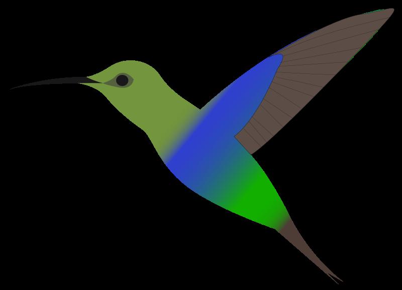 800x577 Free To Share Hummingbird Clipart Clipartmonk