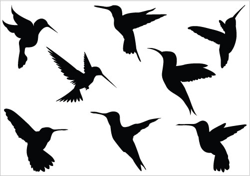 501x352 Best Hummingbird Clipart