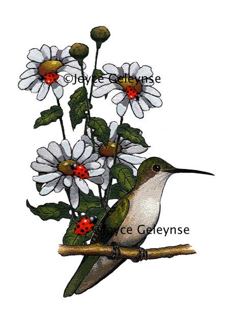 472x640 Bird Clip Art Hummingbird Clipart Hand Drawn Daisies