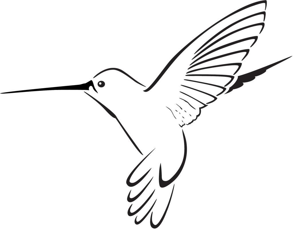 1023x803 Black Clipart Hummingbird