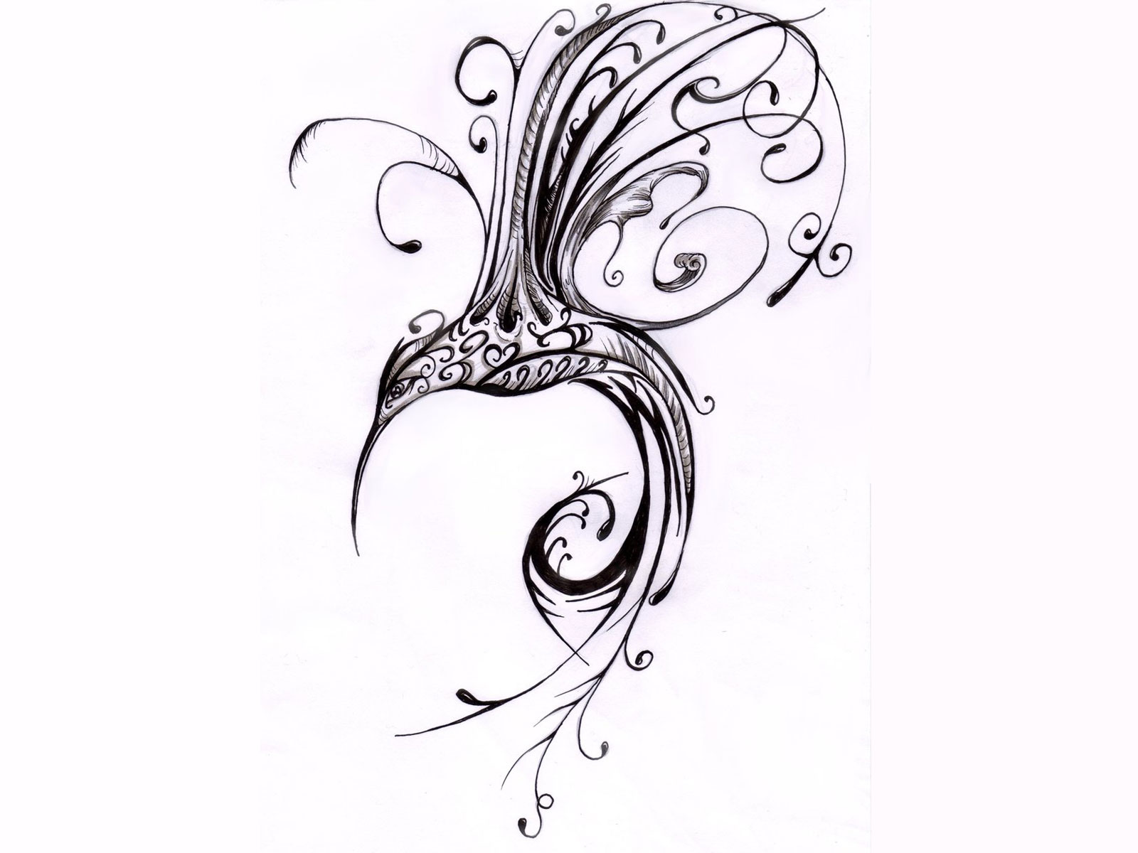 1600x1200 Scrolled Hummingbird Tatoo Hummingbird Drawings Tattoos Art I