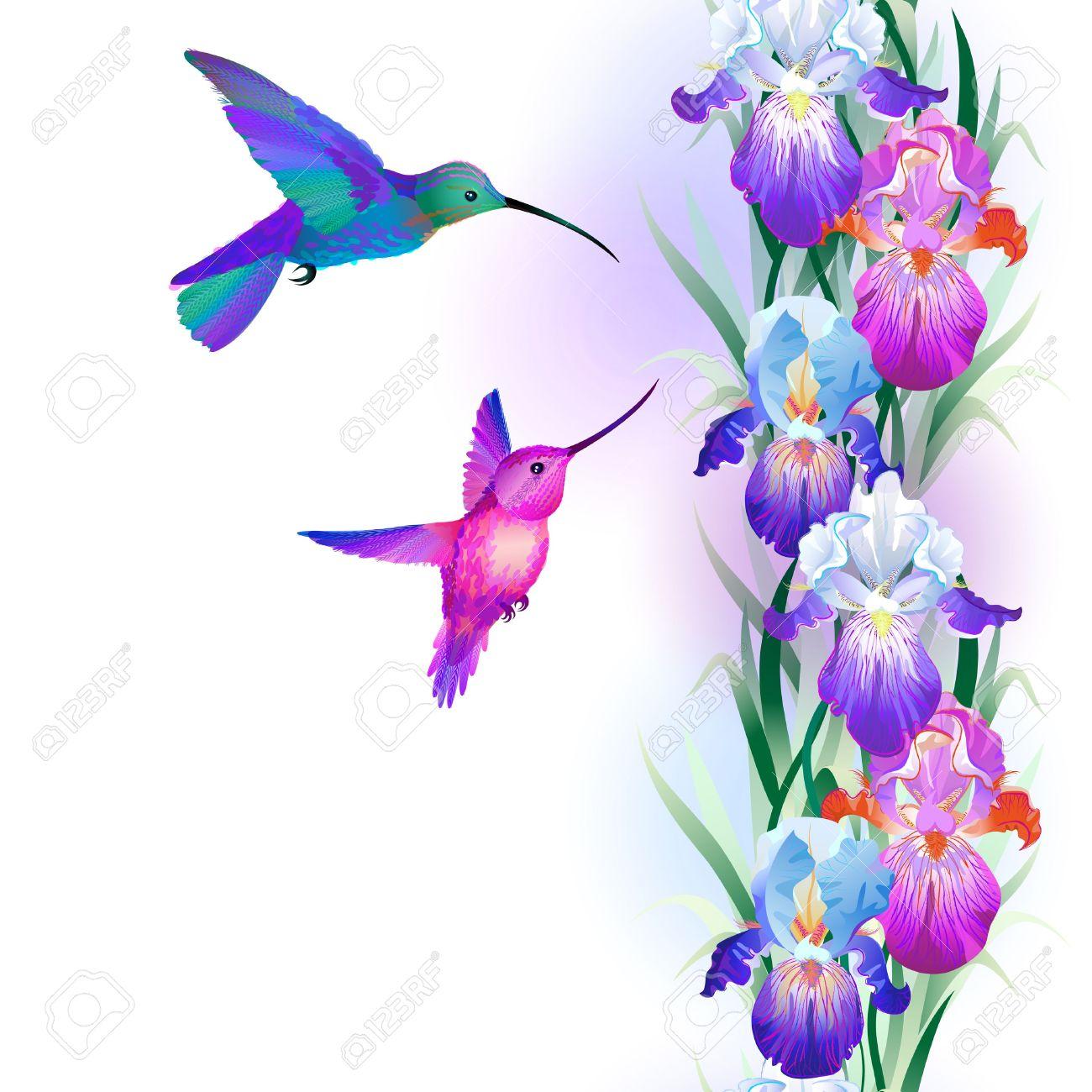 1300x1300 Top 97 Iris Flower Clip Art