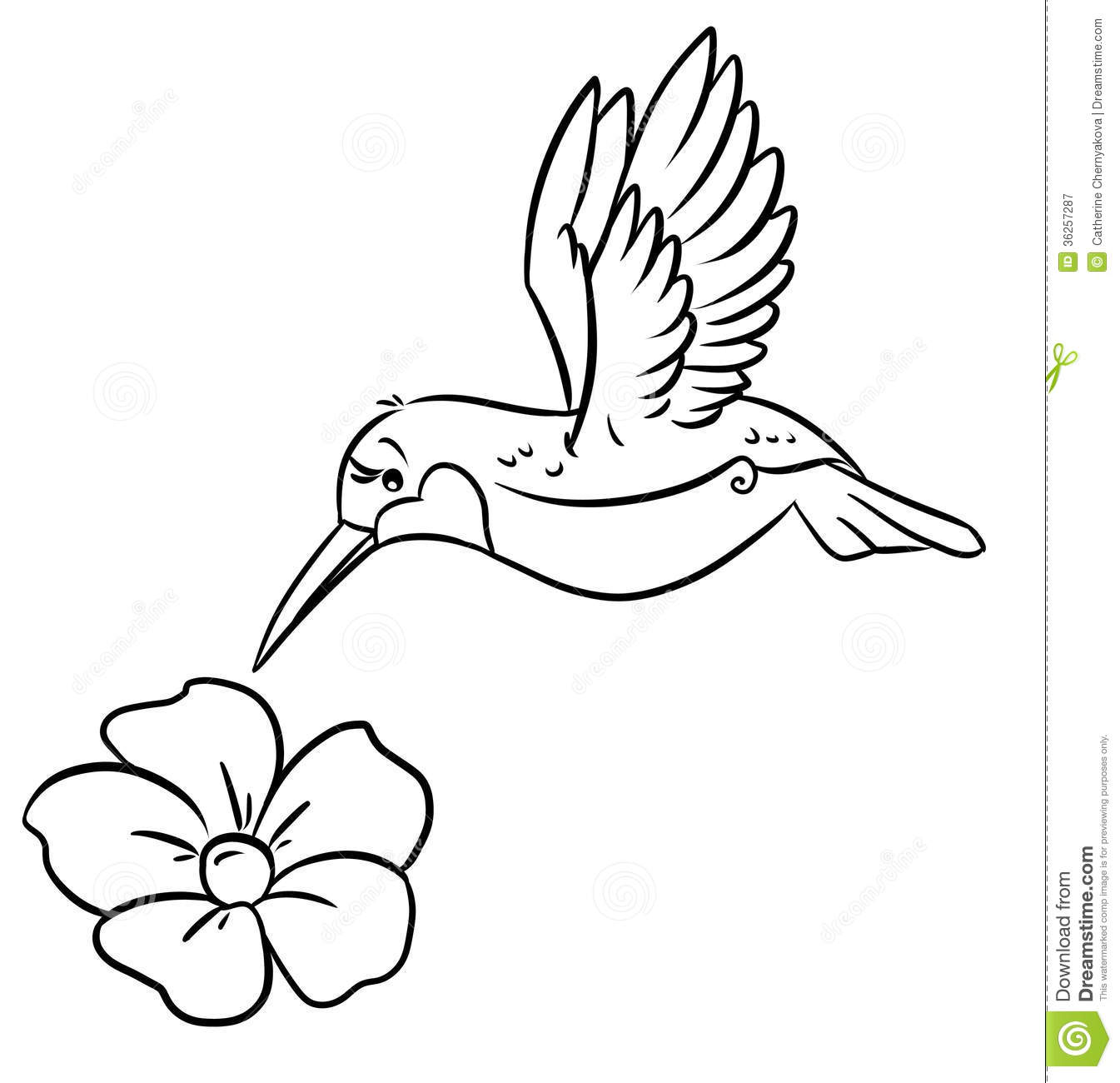 1345x1300 Hummingbird Clipart Black And White