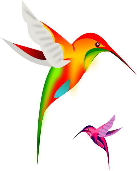 482x600 Hummingbird Clip Art Download