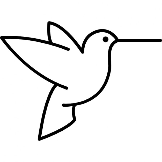 626x626 Humming Bird Outline From Side View Icons Free Download