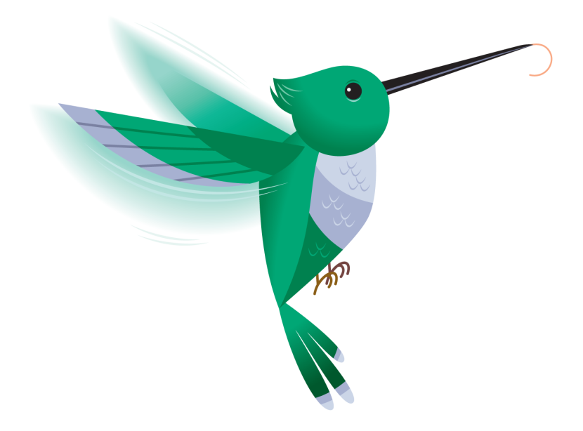 830x614 Hummingbird Clipart Line Art