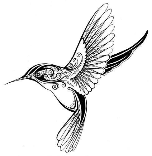 488x500 Pin By Sharon Kitchen On Cricut Stuff Hummingbird