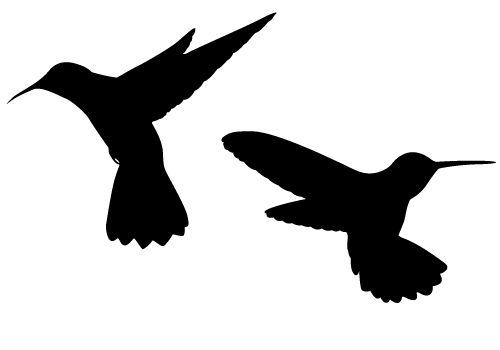 500x350 Black Clipart Hummingbird