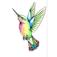 200x200 Hummingbird Png Transparent Hummingbird.png Images. Pluspng