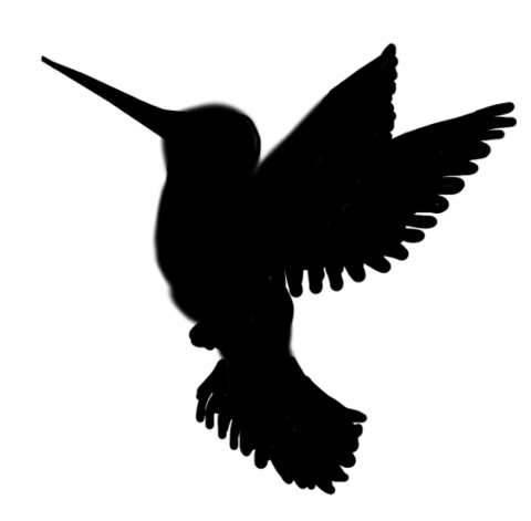 480x471 Hummingbird Silhouette Transparent Png