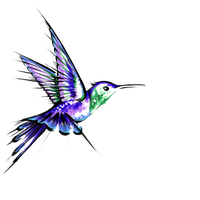 200x200 Download Hummingbird Free Png Photo Images And Clipart Freepngimg